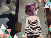 Our cat is such a hipster