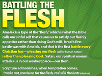 Battling the Flesh Sunday School Handout