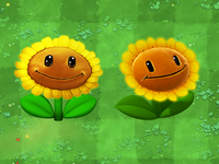 Sunflower Replacement Icons