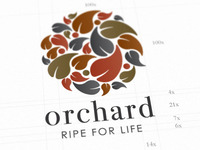 Orchard_supermarket_identity_featured_image_teaser