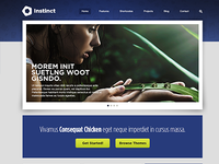 Website Design - Instinct