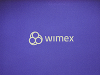 SPT Telecom in Mexico rebrands to WiMex
