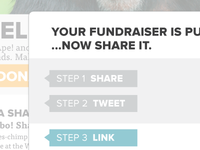 Fundraise Share Interface