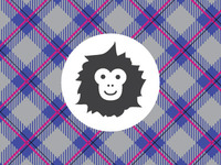 Plaid Monkey Mark & Pattern
