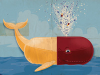 Health Insurance: A Whale of a Pill to Swallow