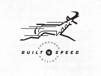 Antelope-built_4_speed_2
