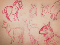Live animals sketched at an art reception