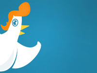 Twitter background pigeon
