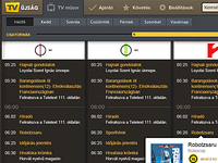 TV program guide UI