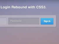 Login Rebound with CSS3