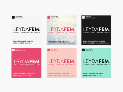 LeydaFem Logo · Colors