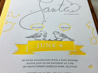 Birds and The Bees Shower Invite