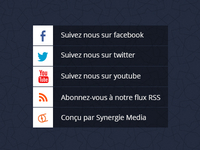 Footer social media links [The Nexties]