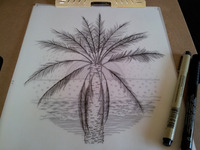 Drawing a palm tree