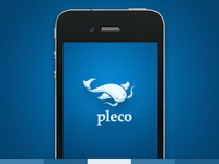 Final Logo Design for Pleco Software