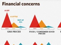 Financial Concerns Detail