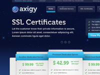 Axigy Website