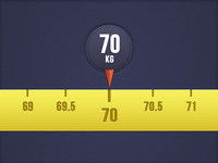 Weight indicator widget