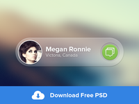 Message Widget -- FREE PSD
