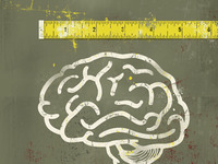 Measuring Brains