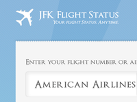 JFK Flight Status