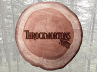 Throckmortons Identity Guide Cover