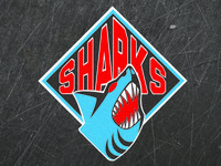 Baltimore Sharks Primary Logo