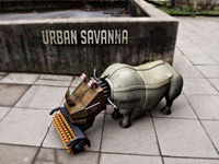 Urban Savanna