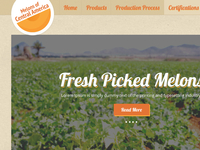 Melons Of Central America Website Design