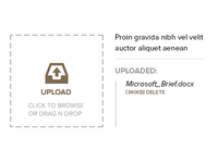 Upload Brief