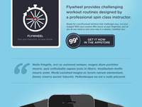 Flywheel Website