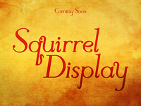 Squirrel Display