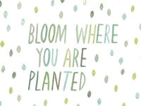 bloom where you are planted / watercolor illustration