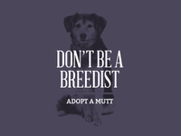 Adopt a Mutt (don't be a breedist)
