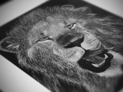 Lion Stippling