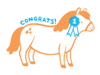 Congratulatory Pony
