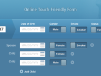 Touch Friendly Online Form