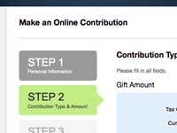 Step 2: Contribution Type & Amount