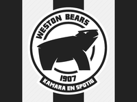Weston Workers Bears