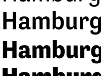 Tenso Grotesk Weights test