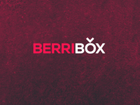 Berribox: The logo
