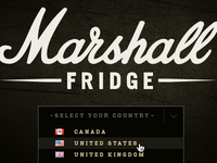 Marshall Fridge Website - Dropdown 2