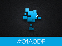 #01A0DF (My Logo Color)