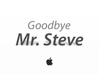 Goodbye Mr. Steve