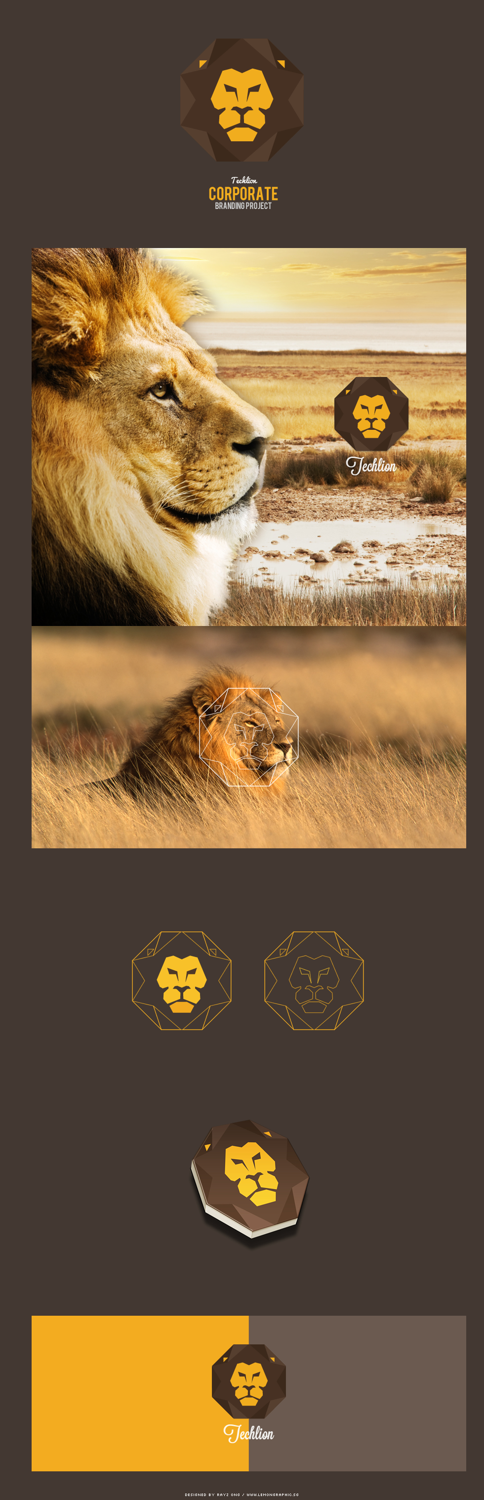 Techlion-corporate-branding-project-01