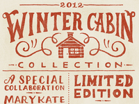 Winter Cabin Flyer