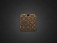 Louis Vuitton Icon Case