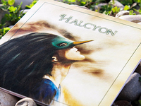 Halcyon album art