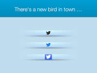 There's a new bird in town …