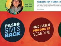 Paseo Site Redesign - Option 2